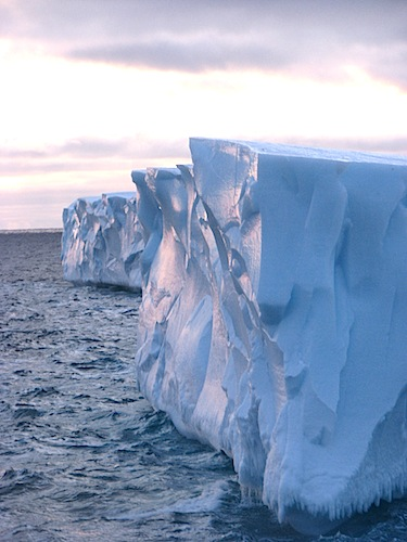 This is how the Petermann Ice Island looked from on board the Amundsen in October 2011. (PHOTO COURTESY OF A. CRAWFORD)