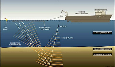 This image from the project description for the NorthEastern Canada 2D Seismic Survey shows how devices mounted on and dragged behind a vessel would send sound waves down through the waters of Baffin Bay. (FILE IMAGE)